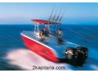 Лодочный мотор Suzuki DF 225 TX (Сузуки)